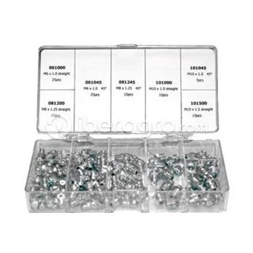 Surtido de engrasadores 100 piezas